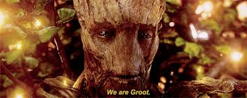 Groot we are
